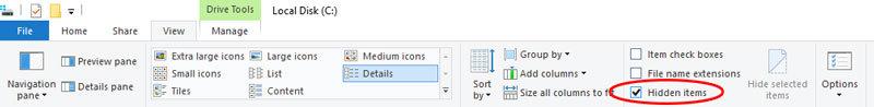 windows 10 rodyti paslėptus failus