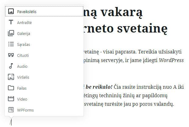 wordpress naujas teksto redaktorius